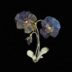 Pansies Two Flower Brooch - Stiefmütterchen